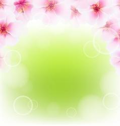Pink cherry flower border with blur vector
