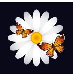 Floral decoration design vector