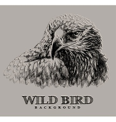 wild bird vector image