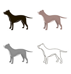 Pitbull icon in cartoon style for web vector