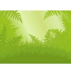 Fern meadow vector