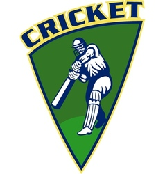 cricket sports batsman batting shield vector image vector image
