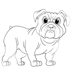 Doodles drafting animal for pug dog vector