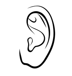 Drawing human ear Outline vector image