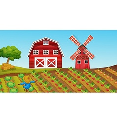 Farmland with crops on the farm vector