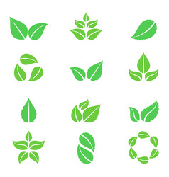 green leaves icons vector image