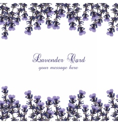 Lavender card decorated border vector
