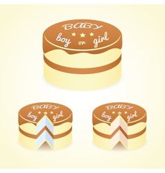 Gender reveal cake vector