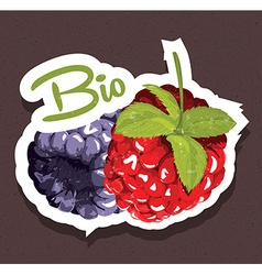 Bio raspberries tag vector