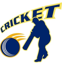 Cricket batsman batting ball vector