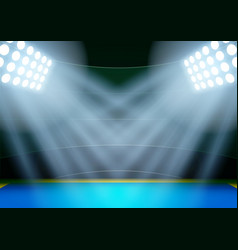 Background for posters night athletics stadium in vector image vector image
