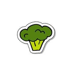 broccoli doodle icon vector image vector image