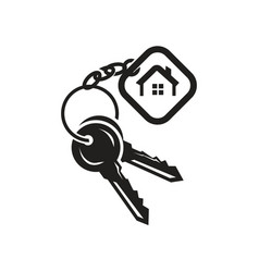 keys with tag icon vector image vector image