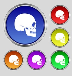 Skull icon sign Round symbol on bright colourful vector image