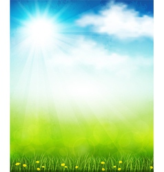 Bright summer vector image