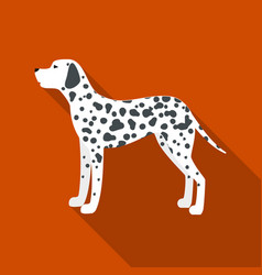 Dalmatian icon in flat style for web vector