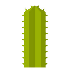 Green cereus candicans cactus icon isolated vector