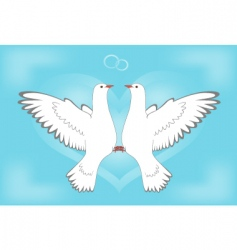 Dove and love vector