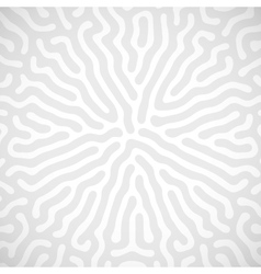 Background with random bio lines vector