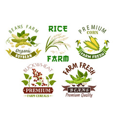 Vegetable cereal bean farm emblem set design vector