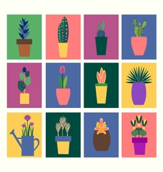 Collection of tropical plants in pot vector
