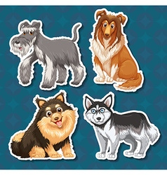 Different type of dogs vector image vector image