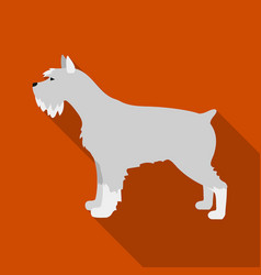 Schnauzer icon in flat style for web vector