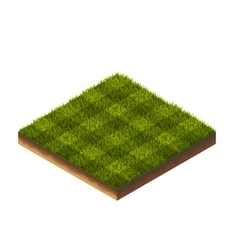 Soccer Grass Isometric vector image