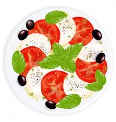 Caprese salad vector