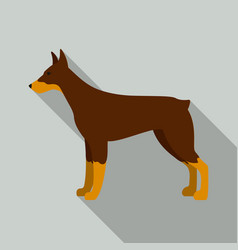 Doberman icon in flat style for web vector