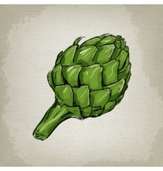 drawing of an artichoke vector image