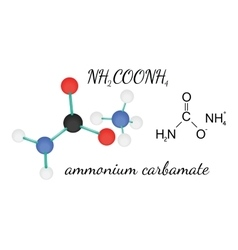 Nh2coonh4 ammonium carbamate molecule vector