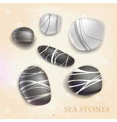 Sea stones vector image