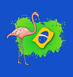 brazil flamingo vector image