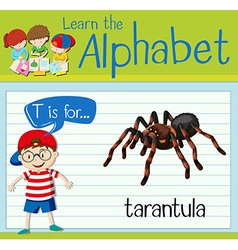 Flashcard letter T is for tarantula vector image vector image