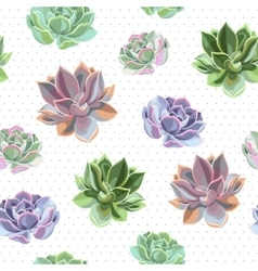 Seamless colorful succulents vector