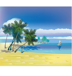 The sea yachts palm trees Travel vector image vector image