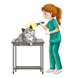 Vet checking up cats ear vector