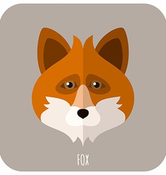 Animal portrait with flat design fox vector
