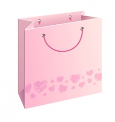 bag with hearts vector image