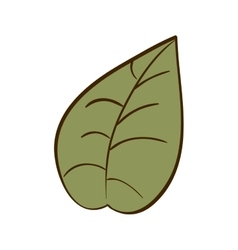 Green leaf nature vector