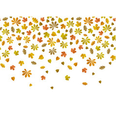 leaf fall background vector image vector image