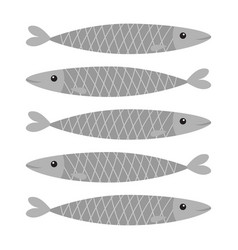 Sardine gray fish icon set iwashi sardina vector