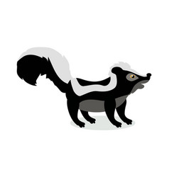 skunk cartoon in flat design vector image vector image