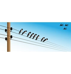 Birds on a wire 1 vector image