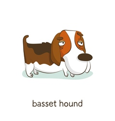 Basset hound dog character isolated on white vector