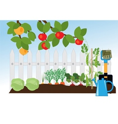 fruit and vegetable garden vector image
