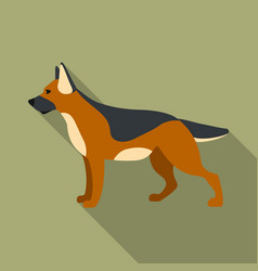 german shepherd icon in flat style for web vector image