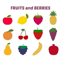 Fruits and berries icons set vector