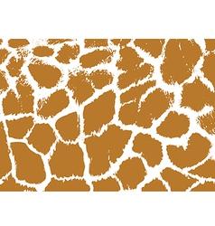 Giraffe Skin vector image vector image